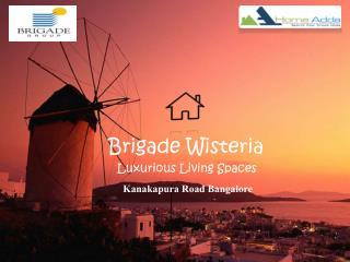 Brigade wisteria