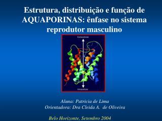 Aluna: Patricia de Lima Orientadora: Dra Cleida A.  de Oliveira