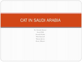CAT IN SAUDI ARABIA