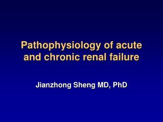 Pathophysiology of acute and chronic renal failure