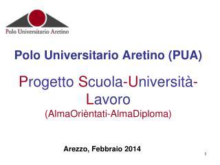 Arezzo, Febbraio 2014