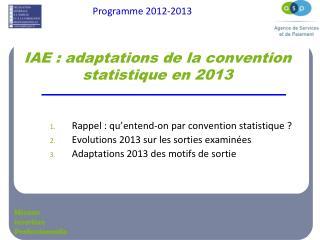 IAE : adaptations de la convention statistique en 2013