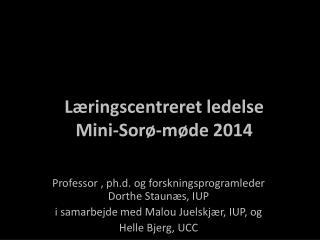 Læringscentreret ledelse  Mini-Sorø-møde 2014