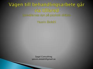 Vägen till behandlingsarbete går  via Ullared  Somaliernas syn på psykisk ohälsa Yassin Ekdahl