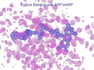 Ligand Building with ARP/wARP