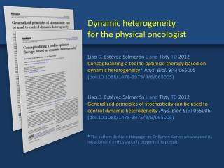 Dynamic heterogeneity  for the physical oncologist