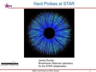 Hard Probes at STAR