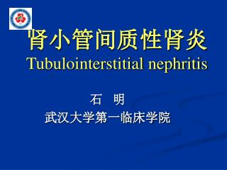 肾小管间质性肾炎  Tubulointerstitial nephritis