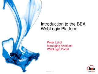 Introduction to the BEA WebLogic Platform