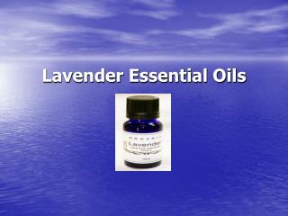 100% Pure Lavender Essential Oils - Healthshop101