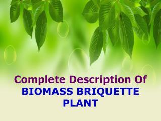 Complete Description Of Biomass Briquette Plant