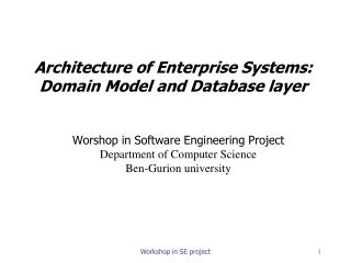Architecture of Enterprise Systems:  Domain Model and Database layer
