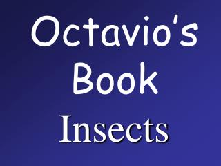Octavio�s Book Insects