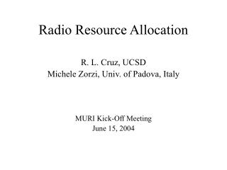 Radio Resource Allocation