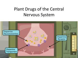 Plant Drugs of the Central Nervous System