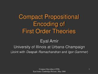 Compact Propositional Encoding of First Order Theories