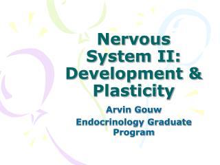 Nervous System II:  Development & Plasticity