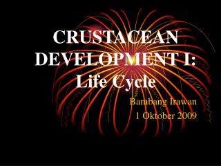CRUSTACEAN DEVELOPMENT I: Life Cycle