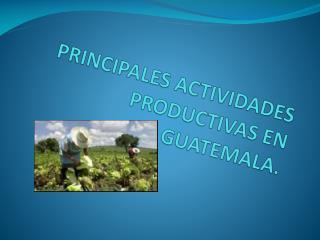 PRINCIPALES ACTIVIDADES PRODUCTIVAS EN GUATEMALA.