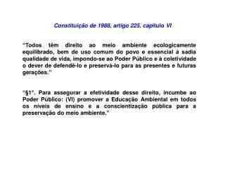 Constitui��o de 1988, artigo 225, cap �tulo  VI