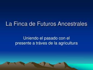 La Finca de Futuros Ancestrales