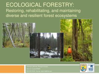 Ecological Forestry:  Restoring, rehabilitating, and maintaining diverse and resilient forest ecosystems