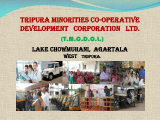 Tripura Minorities Co-Operative Development   Corporation   Ltd. (T.M.C.D.C.L.)