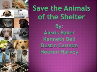 By: Alexis Baker Kenneth Bell Dustin Carmon Heaven Harvey