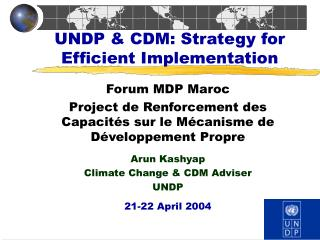 UNDP & CDM: Strategy for Efficient Implementation