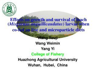 Wang Youji Wang Weimin Yang Yi College of Fishery Huazhong Agricultural University