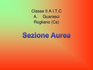 Classe II A I.T.C Guarasci Rogliano ( C s)
