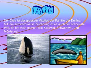 DER ORCA
