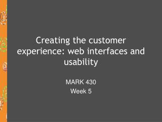 Creating the customer experience: web interfaces and usability