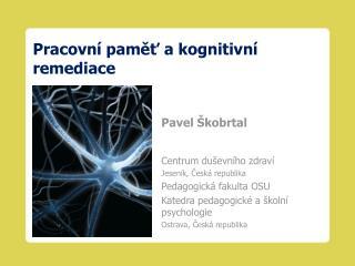 Pracovní paměť a kognitivní remediace