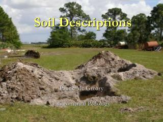 Soil Descriptions