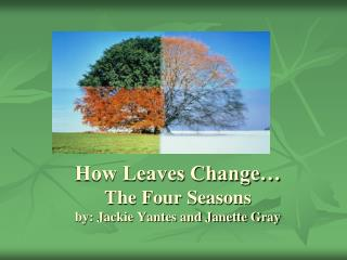 How Leaves Change… The Four Seasons by: Jackie Yantes and Janette Gray