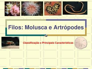Filos: Molusca e Artrópodes