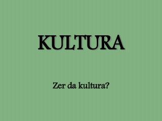 KULTURA Zer da kultura?