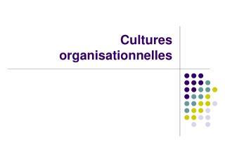 Cultures organisationnelles