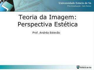 Teoria da Imagem: Perspectiva Estética