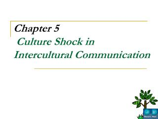 Chapter 5  Culture Shock in Intercultural Communication