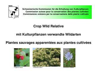 Schweizerische Kommission für die Erhaltung von Kulturpflanzen