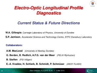 Electro-Optic Longitudinal Profile  Diagnostics  Current Status & Future Directions