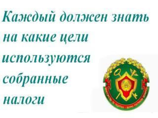 Как используются налоги в Беларуси?