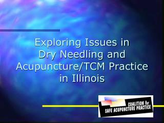Exploring Issues in  Dry Needling and  Acupuncture/TCM Practice  in Illinois
