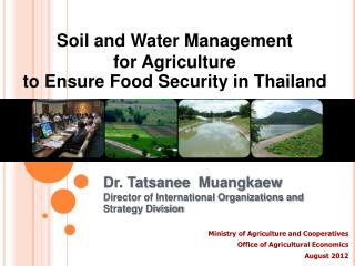 Dr.  Tatsanee Muangkaew Director of International Organizations and Strategy Division