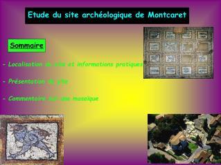 Etude du site arch�ologique de Montcaret
