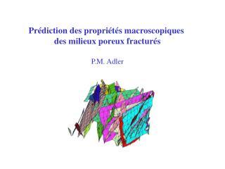 Prédiction des propriétés macroscopiques  des milieux poreux fracturés P.M. Adler
