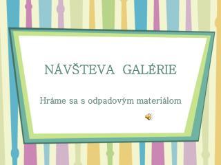 NÁVŠTEVA  GALÉRIE