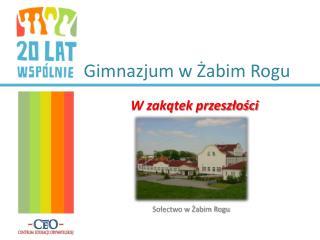 Gimnazjum w Żabim Rogu